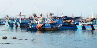 Regione Marche: PO FEAMP 2014-2020 Mis. 1.38 Limitazione dell'impatto della pesca sull'ambiente marino e adeguamento della pesca alla protezione delle specie approvazione avviso pubblico per la presentazione delle domande di contributo-scadenza 2 Ottobre 2017
