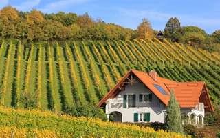 CREA – Consiglio per la Ricerca in Agricoltura: Concorsi – scadenza 21 ottobre 2018