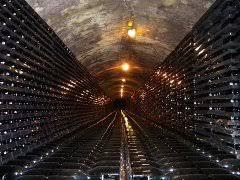 """Regione Marche: Bando Misura 33 """"Misure urgenti per favorire la liquidità nelle aziende vitivinicole a seguito del COVID-19 attraverso un aiuto allo stoccaggio temporaneo dei vini di qualità"""" – Modifiche al Bando – scadenza 20 luglio 2020 ore 13:00"""