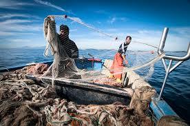 Regione Marche:MISURA 42 – Contributi a fondo perduto per spese correnti e per spese di investimento destinate alla sicurezza dei lavoratori e all'adeguamento dell'impresa a nuove modalità di commercializzazione del prodotto ittico – scadenza 8 luglio 2020