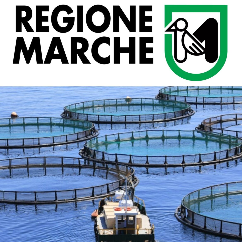 """Contributo – Compensazioni agli acquacoltori per la sospensione temporanea o la riduzione della produzione e delle vendite a seguito dell'epidemia di COVID-19"""""""