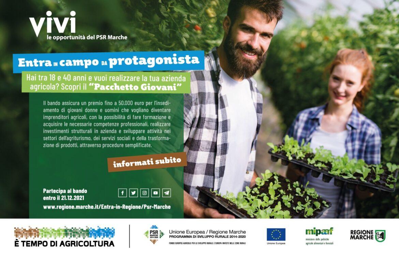 PSR MARCHE – PACCHETTO GIOVANI 2021 – Aiuti all'avviamento per l'insediamento di giovani agricoltori